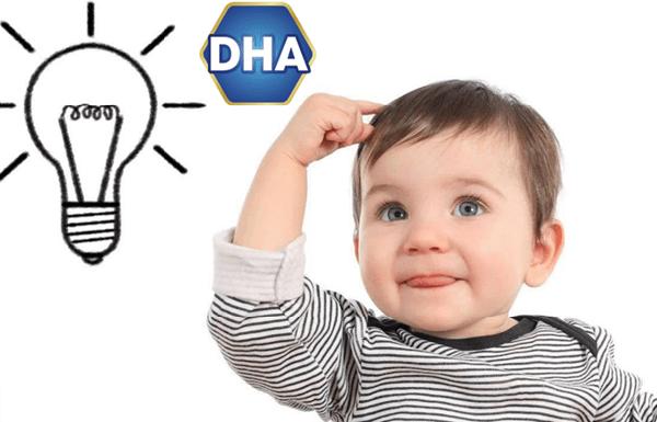 DHA là gì